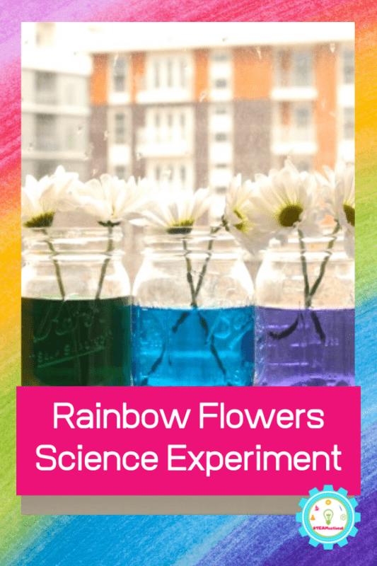 rainbow flowers experiment