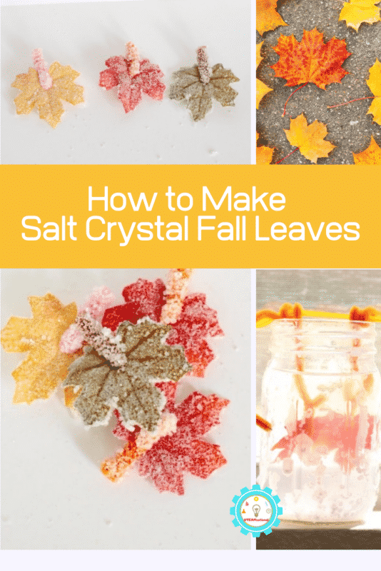 These salt crystal leaves are the perfect fall science experiment, and cleverly mimic the appearance of frost on a fall leaf. Kids will love this salt crystal leaves science experiment!