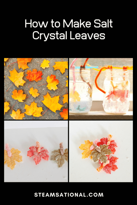 how to make salt crystal leaves