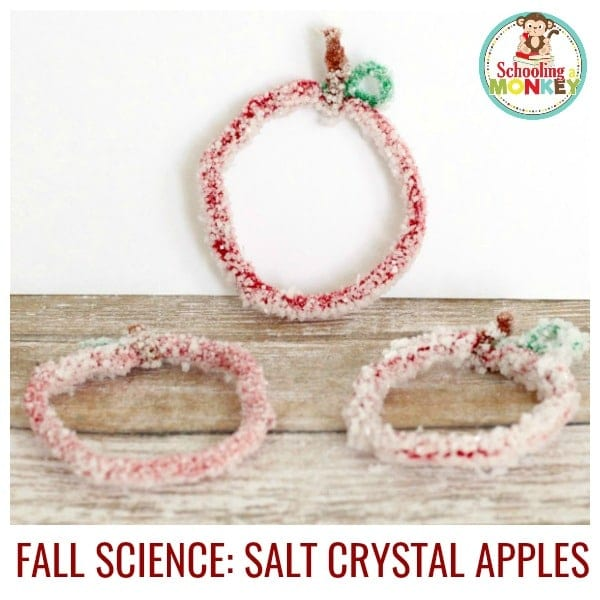 How to Make Simple Salt Crystal Apples