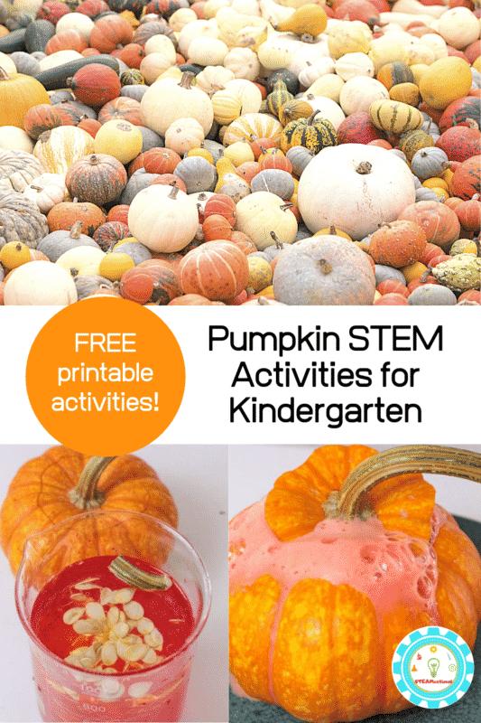 pumpkin stem activities for kindergarten