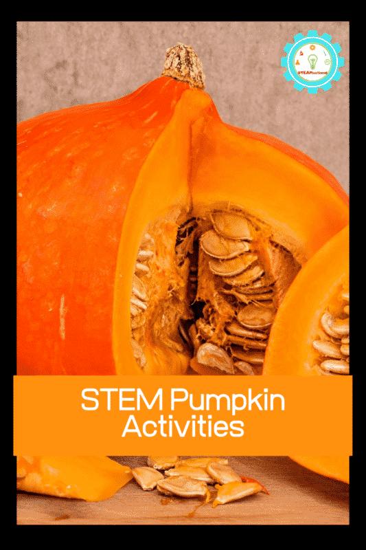 stem pumpkin activities