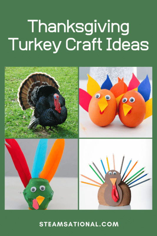 You can't go wrong with any of these turkey craft ideas for Thanksgiving! Kids will love making these turkey art projects.