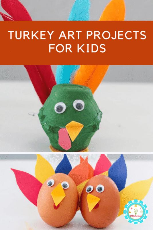 turkey art projects