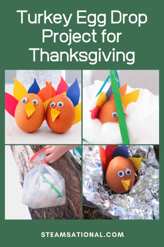 The turkey egg drop project with popsicle sticks is tons of fun and just the thing to try on Thanksgiving day with the kiddos.