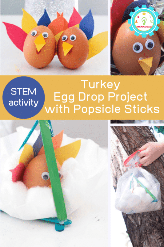 egg drop project with popsicle sticks