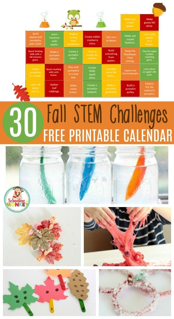Love STEM? Love the fall? You'll love these hands-on STEM activities with a fall and Thanksgiving twist! STEM activities for fall are super fun!
