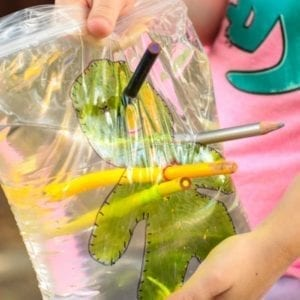 The Perfect Halloween Twist on the Leakproof Bag Experiment