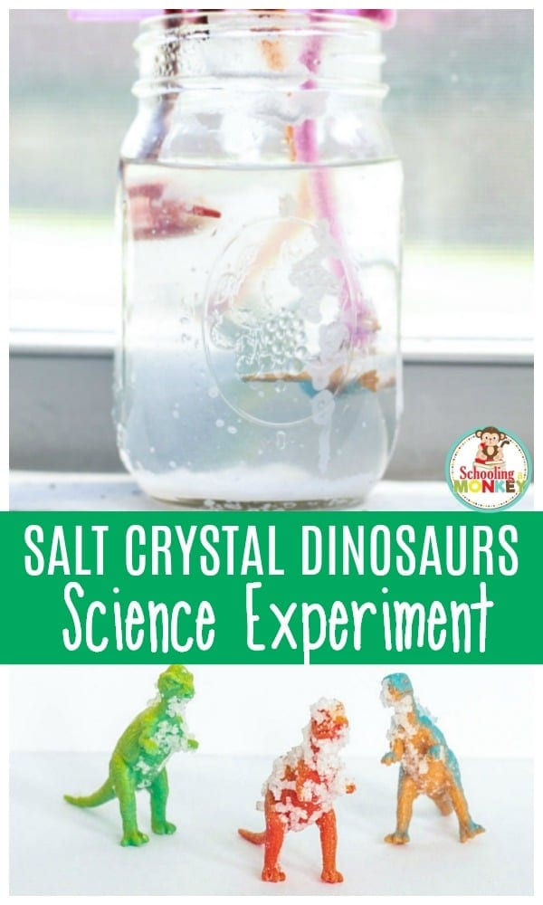 Learning with dinosaurs is so much fun. Use this science experiment to learn about salt crystals using dinosaurs! The dinosaur salt crystal science experiment is a fun learning activity for preschoolers and kindergarten. #dinosaurs #handsonlearning #scienceexperiments #preschoolactivities