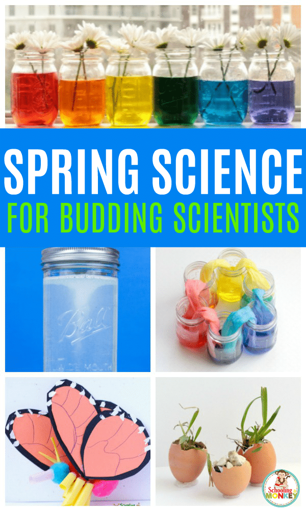 Love science? Love spring? These spring science experiments are the best experiments to do in the classroom or at home in the spring! Spring science activities for kids will help make the best spring science projects and spring science fair experiments! #scienceexperiments #stemactivities #science #springactivities