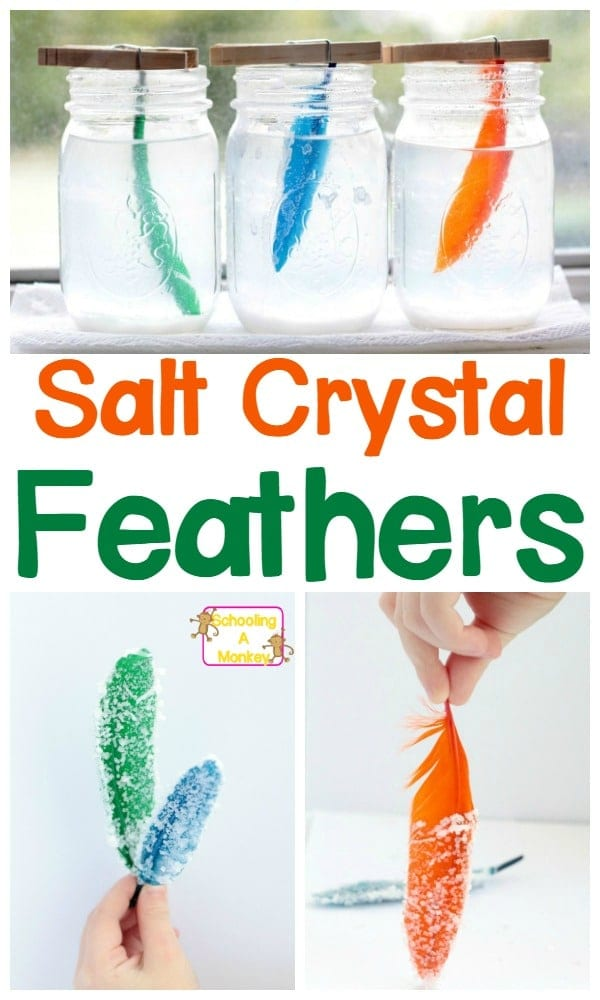 fun science experiments for kids - salt crystal feathers science experiment