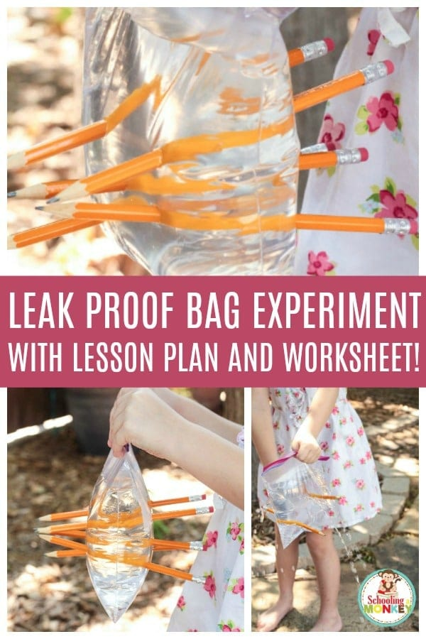 The leak proof bag science experiment is a lesson in polymer chains and how they work. This quick science experiment includes a leak proof bag experiment worksheet to complete the lesson. #scienceexperiment #stemed #stemactivities #backtoschool