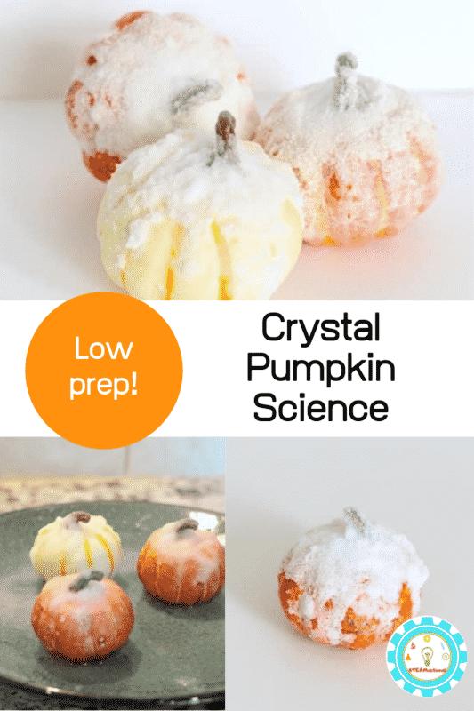 perfect salt crystal experiment