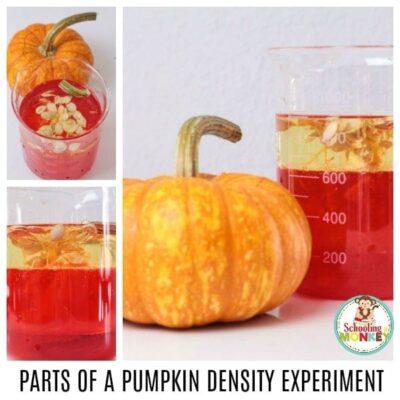 Parts of a Pumpkin Density Column Experiment
