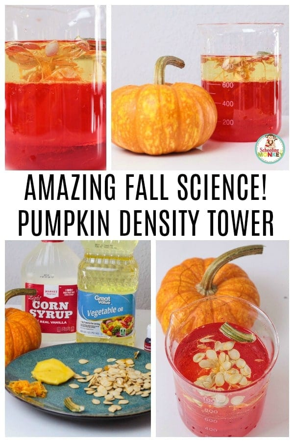 Take your density experiments to the next level with the parts of a pumpkin density column experiment! Building a density column has never been this fun! #stemactivities #stemed #stem #handsonlearning #fallactivities #scienceexperiments