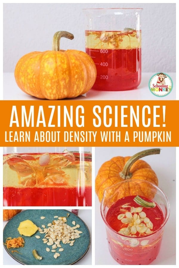 Take your density experiments to the next level with the parts of a pumpkin density lab! Building a density column has never been this fun! #stemactivities #stemed #stem #handsonlearning #fallactivities #scienceexperiments