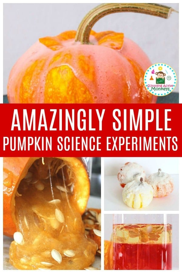 When it comes to fall science, pumpkin experiments are the most fun! Kids will have a blast with these fall science activities featuring pumpkins. #stemed #stemactivities #scienceexperiments #scienceforkids #fallactivities