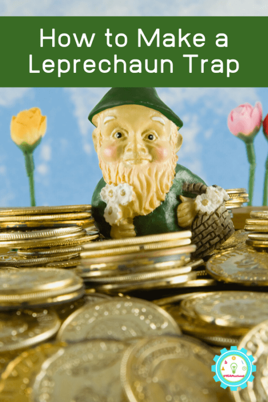 easy leprechaun trap