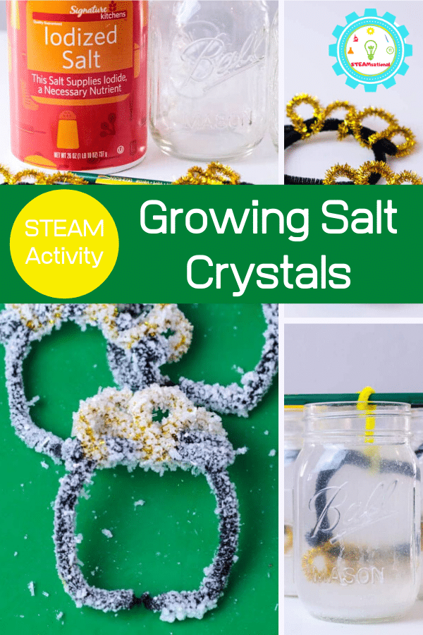 Try this twist on how to grow salt crystals at home by learning how to grow salt crystals fast! The pot of gold shape is perfect for St. Patrick's Day science activities.