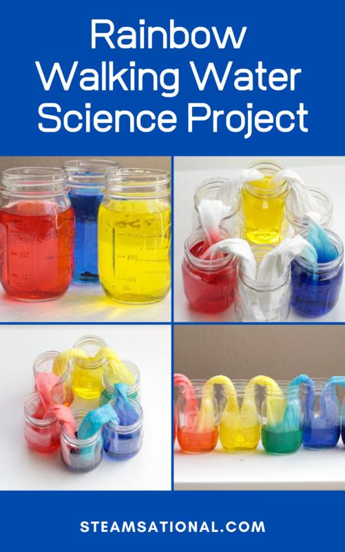 rainbow walking water science project