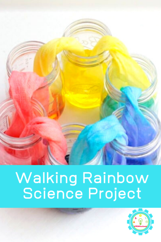 Kids will love making their very own walking rainbow experiment from just three colors. It's amazing how color mixing science experiments for kids can make something spectacular!