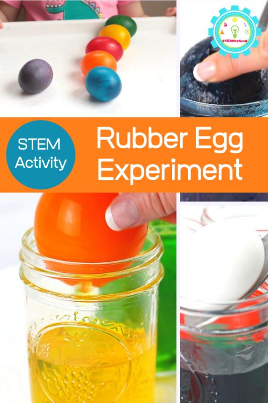egg in vinegar science experiment
