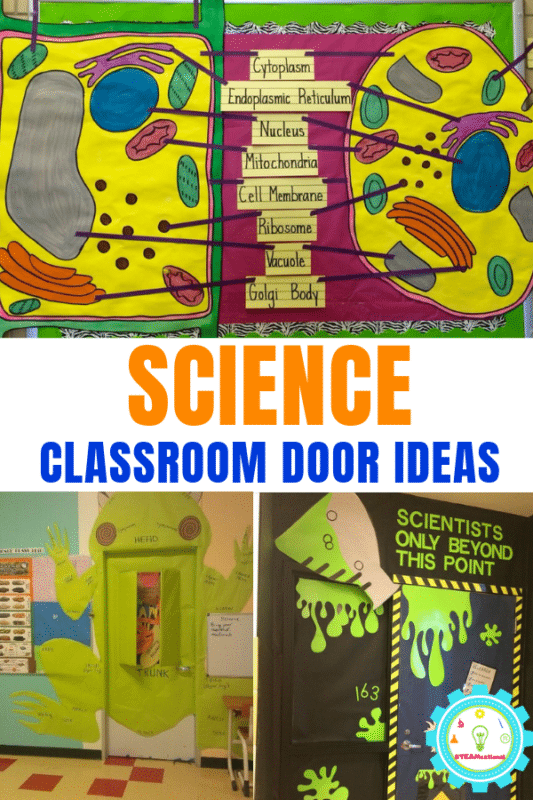 21 Clever Science Classroom Decorating Ideas for Your ...