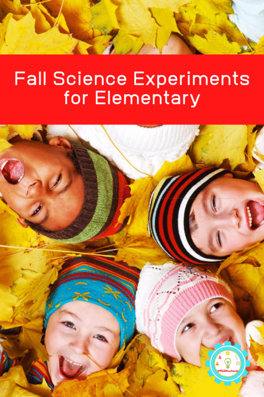 fall science experiments