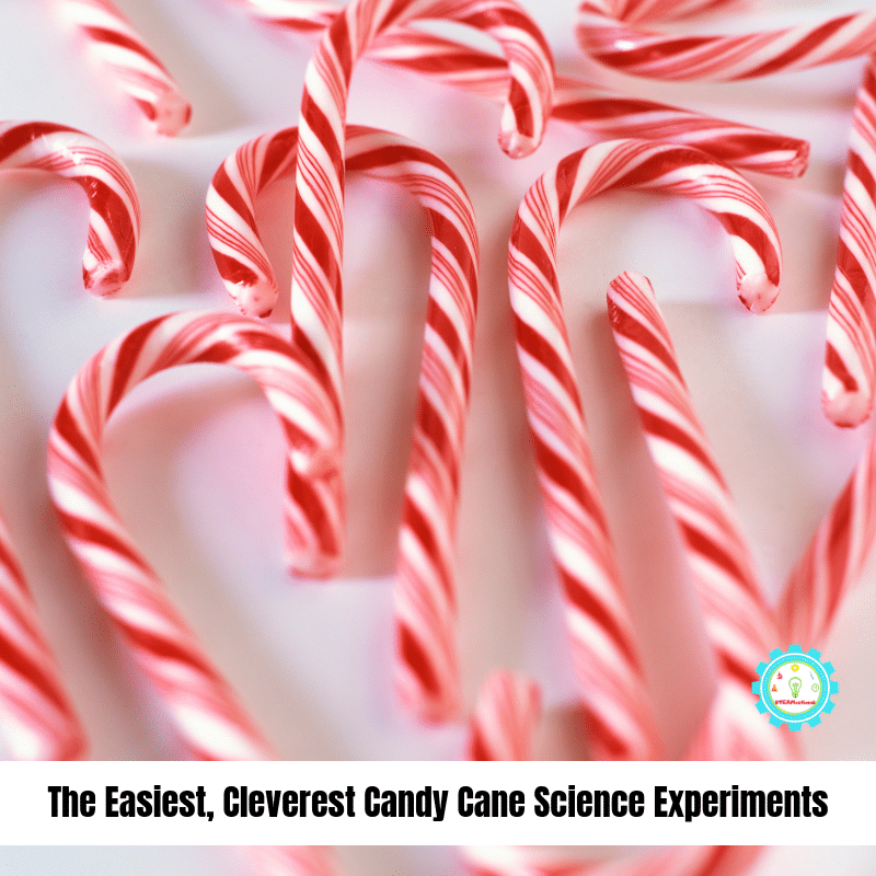 If you love candy canes, you'll love these candy cane science experiments! Fun Christmas science and winter science experiments for kids!