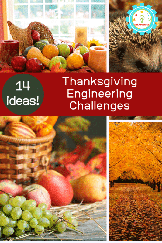 Thanksgiving Engineering Challenges