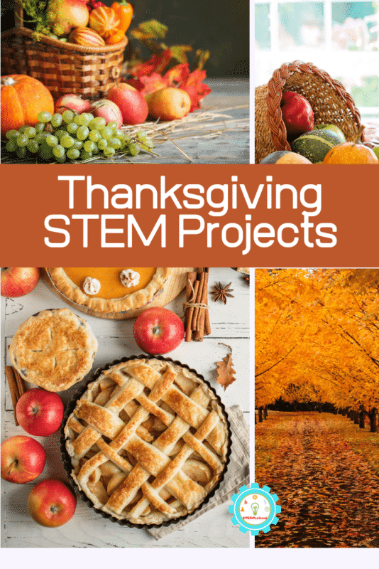 thanksgiving stem projects