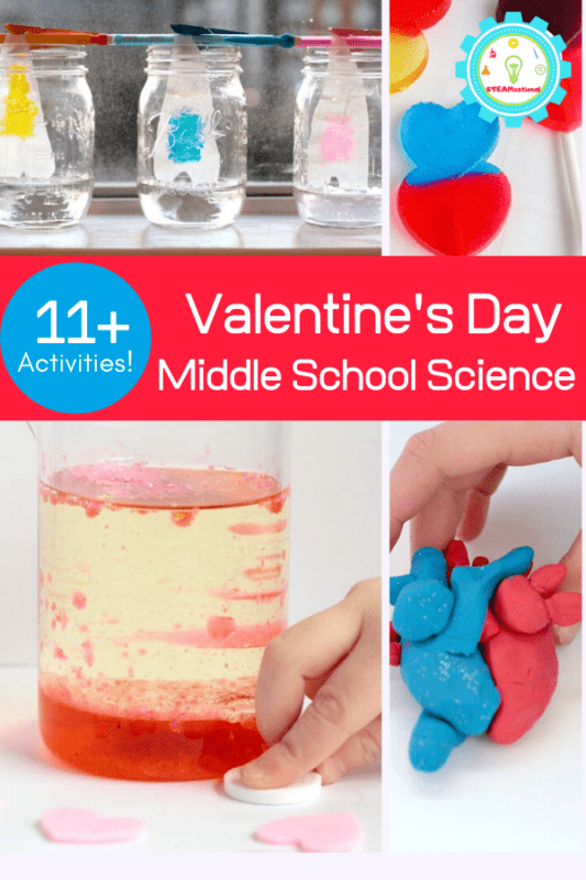 This Valentine's Day, bring a little bit of flair to middle school science lessons with these Valentine's Day science activities for middle school.