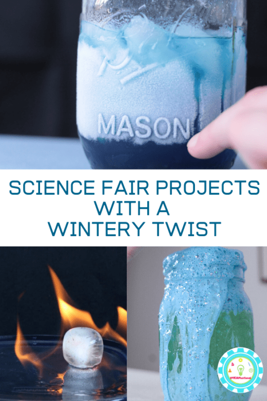 winter science fair ideas