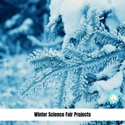 Clever Winter Science Fair Projects That Kids Will Actually Enjoy