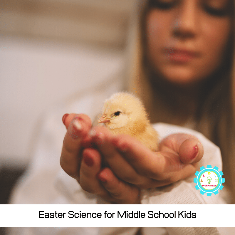Middle schoolers are overgrown kids who just want to have a fun time in the classroom. You can fulfil their dreams and wishes with these exciting Easter science projects for middle school!