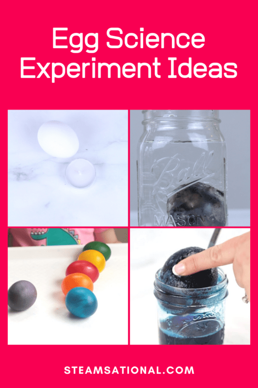 egg science projects