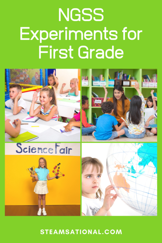 ngss 1st grade lesson plans