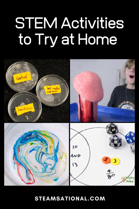 stem activities for adults