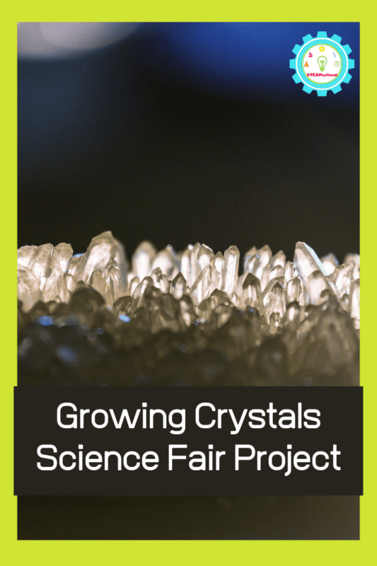 growing crystals science fair project