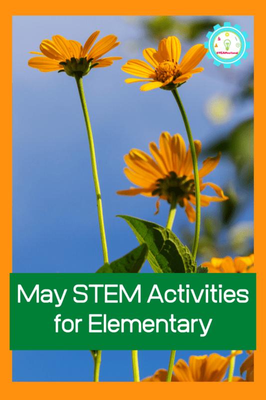 may stem activities elementary