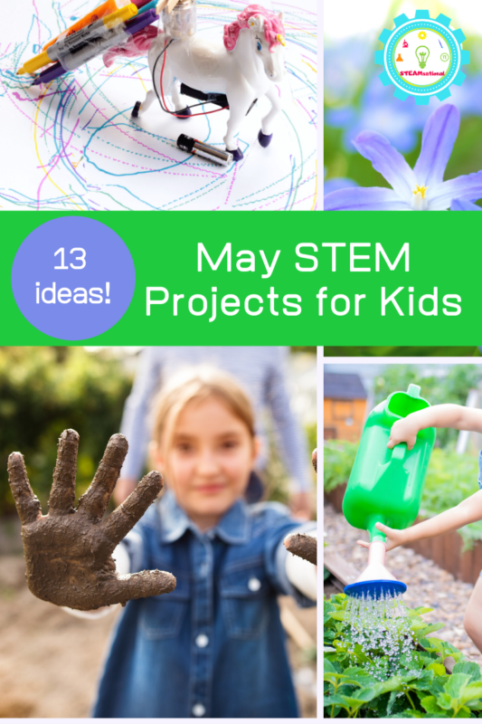 may stem projects