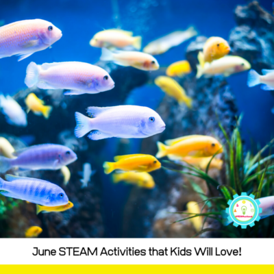 June STEAM Activities Perfect for At-Home Summer Fun