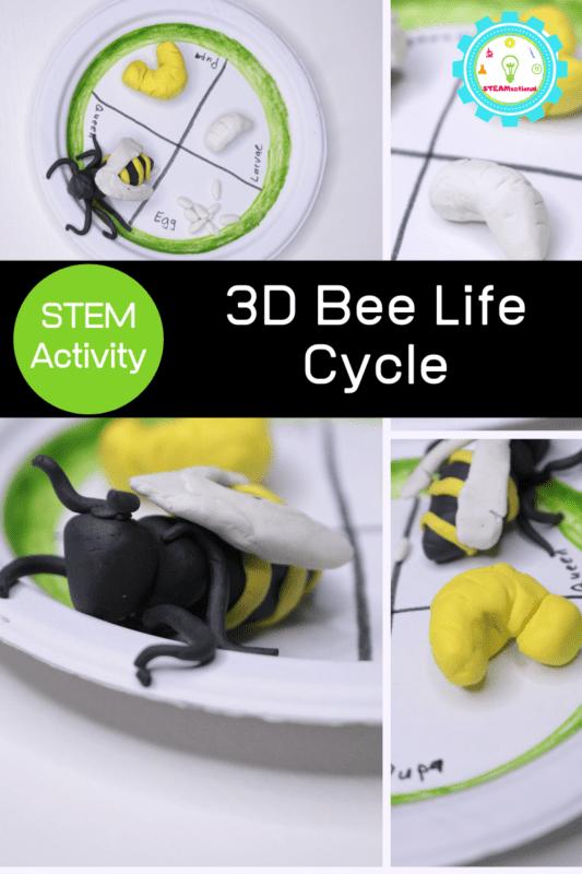 super pollinator stem activity