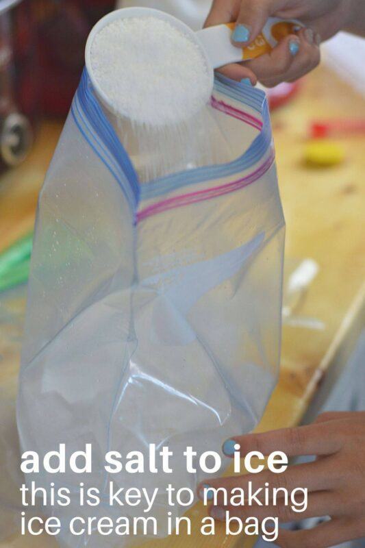 ice cream in a bag science experiment