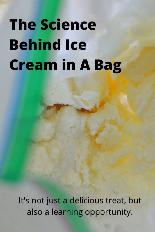 ice cream in a bag science project