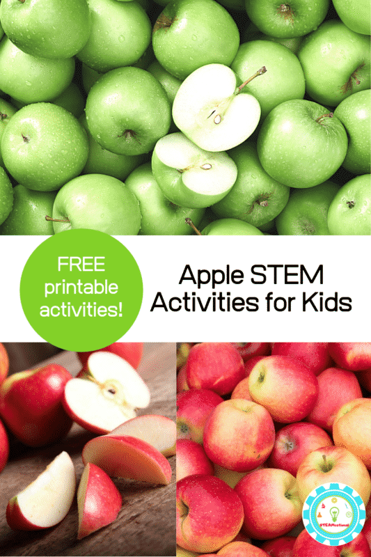 apple stem activities