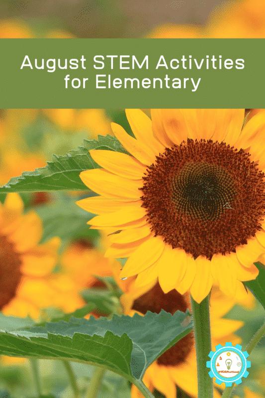 elementary stem challenges august