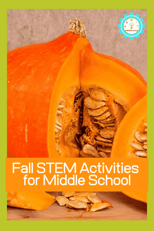 fall stem activities for middle school