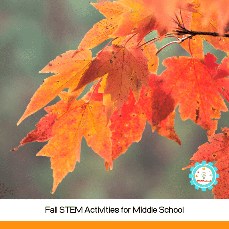 Middle school science needs application for the real world. These fall STEM activities for middle school can provide that and fun!