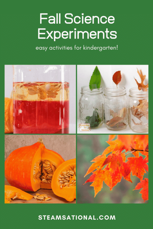kindergarten science experiments fall